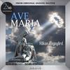 Hakan Hagegard - Aftonsang och Julepsalm -  FLAC 352kHz/24bit DXD Download