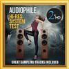 Various Artists - Audiophile Hi-Res System Test - Great Sampling Tracks Included -  DSD (Single Rate) 2.8MHz/64fs Download