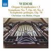 Christian von Blohn - Widor: Organ Symphonies, Vol. 3 -  FLAC 96kHz/24bit Download