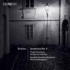 Swedish Chamber Orchestra - Brahms: Orchestral Works -  FLAC Multichannel 96kHz/24bit Download