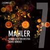 Minnesota Orchestra - Mahler: Symphony No. 7 in E Minor 'Song of the Night' -  FLAC Multichannel 96kHz/24bit Download
