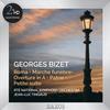 Ireland RTE National Symphony Orchestra - Bizet Roma - Marche Funebre -  FLAC 192kHz/24bit Download