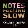 Cowboy Junkies - Notes Falling Slow -  FLAC 44kHz/24bit Download
