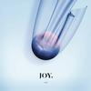 JOY. - ODE -  FLAC 44kHz/24bit Download