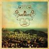 Natiruts - Natiruts Acustico no Rio de Janeiro -  FLAC 44kHz/24bit Download
