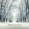 Quadriga Consort - Winter's Delights - Early Christmas Music and Carols from the British Isles -  FLAC 96kHz/24bit Download