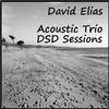 David Elias - Acoustic Trio DSD Sessions -  DSD