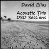 David Elias - Acoustic Trio DSD Sessions -  FLAC 176kHz/24bit Download