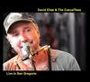David Elias & The CasualTees - Live in San Gregorio