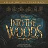 Various Artists - Into the Woods -  FLAC 48kHz/24Bit Download