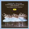 Boston Symphony Orchestra - Tchaikovsky: Swan Lake, Op.20, TH.12 -  FLAC 96kHz/24bit Download