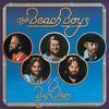 The Beach Boys - 15 Big Ones -  FLAC 192kHz/24bit Download