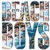 The Beach Boys - The Beach Boys -  FLAC 192kHz/24bit Download