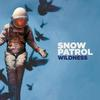Snow Patrol - Wildness -  FLAC 44kHz/24bit Download