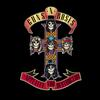 Guns N' Roses - Appetite For Destruction -  FLAC 96kHz/24bit Download