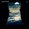 Steve Tibbetts - Natural Causes -  FLAC 88kHz/24bit Download