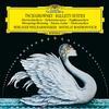 Berliner Philharmoniker - Tchaikovsky: Ballet Suites -  FLAC 96kHz/24bit Download