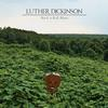 Luther Dickinson - Rock 'n Roll Blues -  FLAC 96kHz/24bit Download