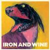 Iron and Wine - The Shepherd's Dog -  FLAC 44kHz/24bit Download