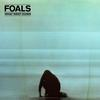 Foals - What Went Down -  FLAC 44kHz/24bit Download
