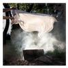Pianos Become The Teeth - Keep You -  FLAC 44kHz/24bit Download