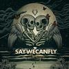 SayWeCanFly - Darling -  FLAC 44kHz/24bit Download