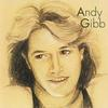 Andy Gibb - Andy Gibb -  FLAC 192kHz/24bit Download
