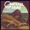 The Grateful Dead - Wake Of The Flood -  FLAC 192kHz/24bit Download