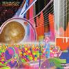 The Flaming Lips - The Flaming Lips Onboard the International Space Station Concert for Peace -  FLAC 96kHz/24bit Download