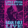 Little Steven - Soulfire Live! -  FLAC 96kHz/24bit Download