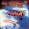 Joe Walsh - The Smoker You Drink, The Player You Get -  45 RPM Vinyl Record