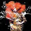 Bjork - Biophilia -  Vinyl Record